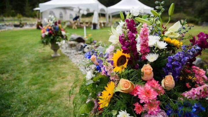 Czy warto skorzystać z namiotów na weselu?